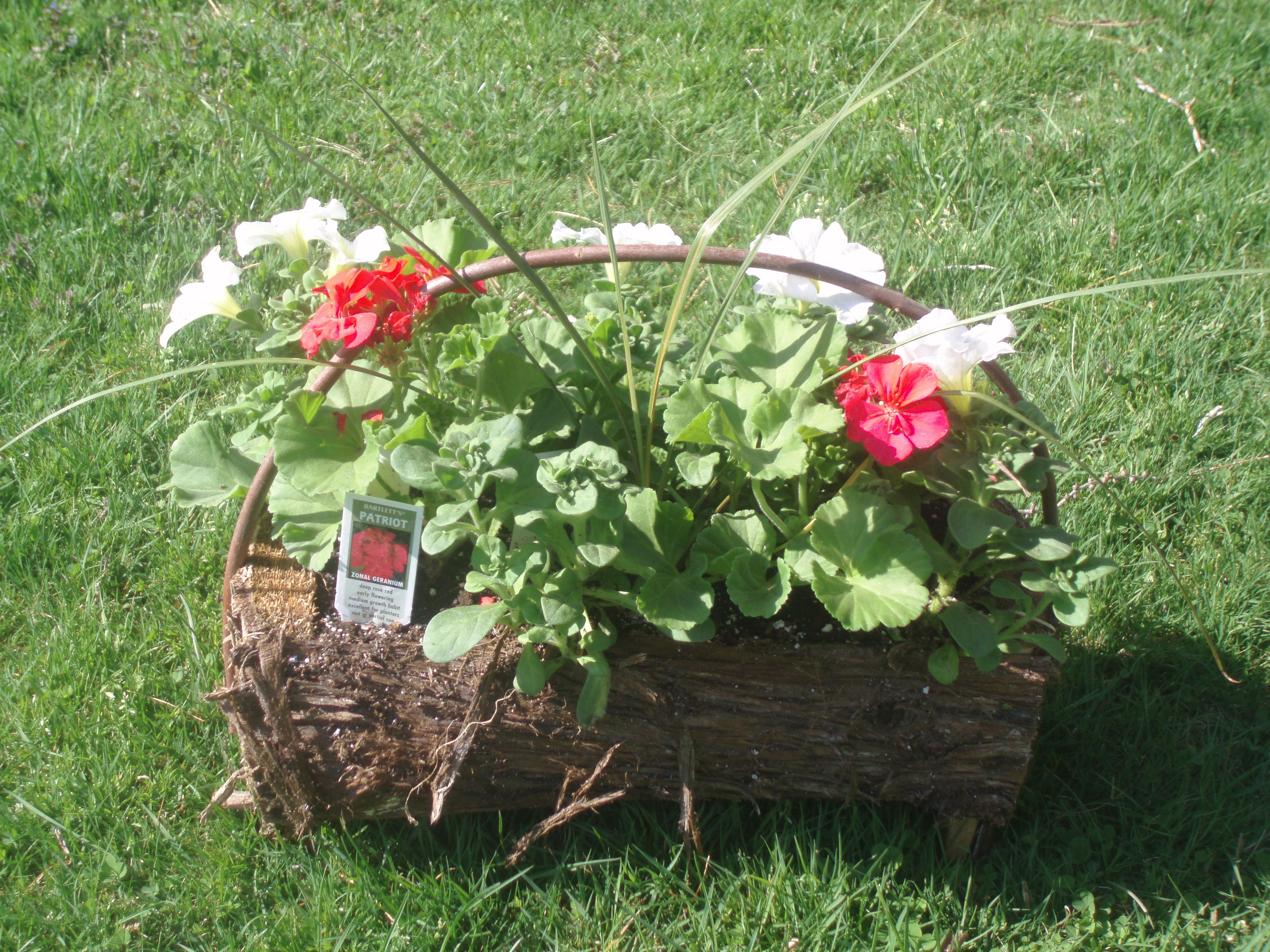 Small Spring Basket